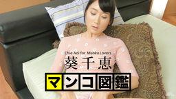 MANKO Zukan AOI Chie :: Chie Aoi