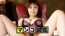 MANKO Zukan MIZUKI Kanade :: Kanade Mizuki