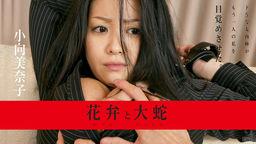 Kabun to Daija :: Minako Komukai