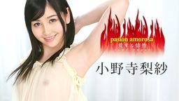 pasión amorosa - Aisuru Jônetsu 5 - :: Risa Onodera