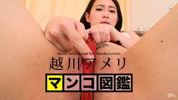 MANKO Zukan KOSHIKAWA Ameri :: Ameri Koshikawa