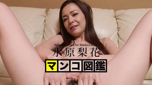 MANKO Zukan MIZUHARA Rinka :: Rinka Mizuhara