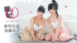 Like Butterflies: Two Wheels Soapland In Pink Street 8 Nako Sudo, Kaho Morisaki