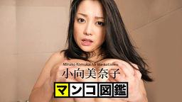 小向美奈子 ボインスル KingHost.Com