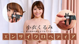 Walnut walnut Sexy Actress Encyclopedia Koi Kurumi