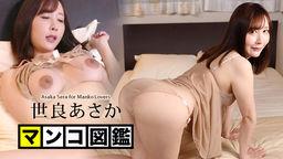 أساكا سيرا كتاب صور الهرة أساكا سيرا