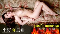 パシオン・アモローサ 〜愛する情熱 3〜 小野麻里亜