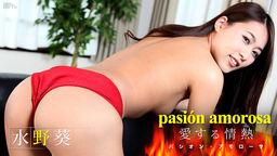 パシオン・アモローサ 〜愛する情熱 4〜 水野葵